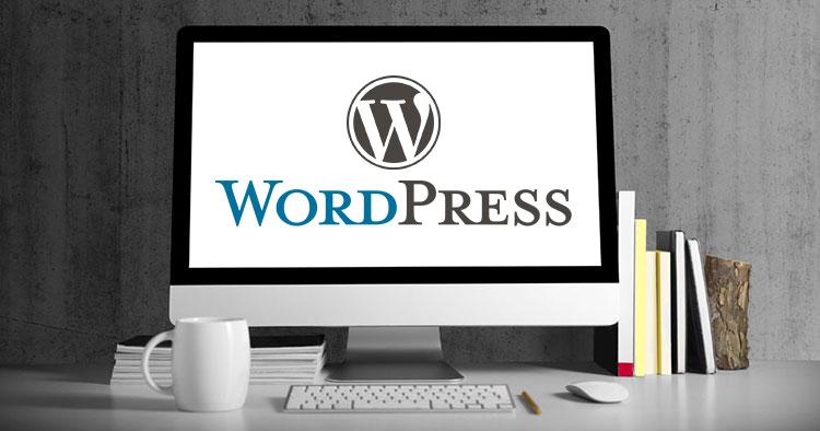WordPress文章编辑器增加彩色边框代码